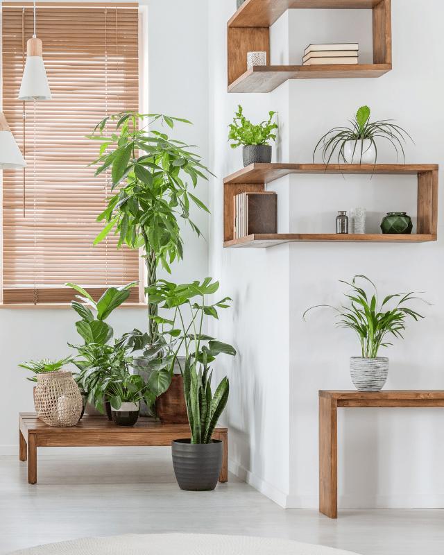 Eco Home header