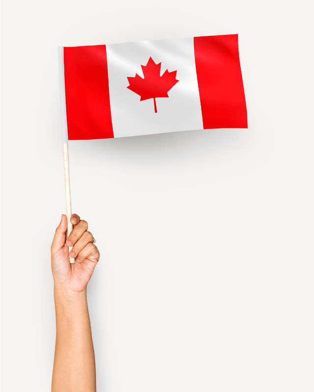 Flags header