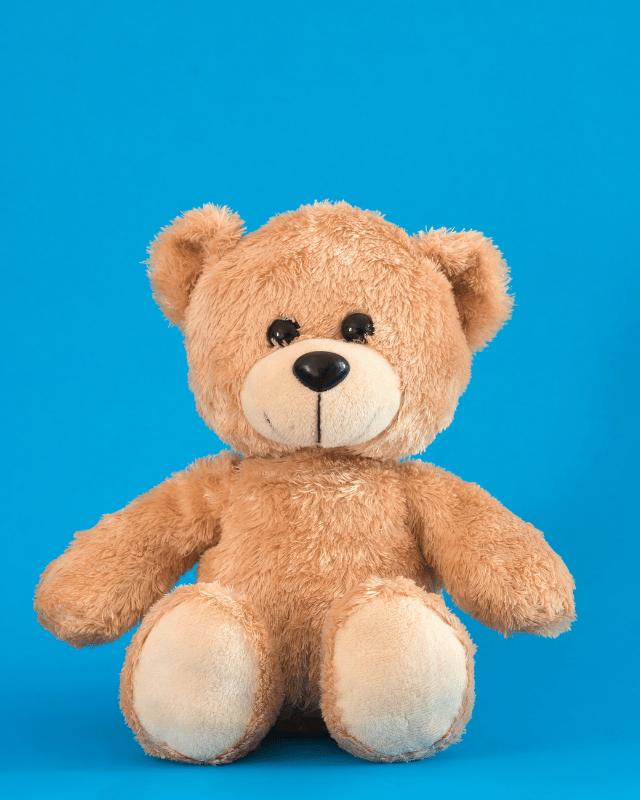 Teddy Bears header